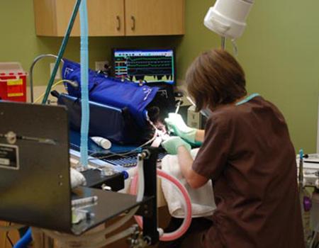 1_0005_dental
